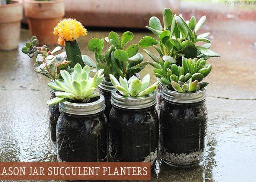 Mason Jar Succulent Planters