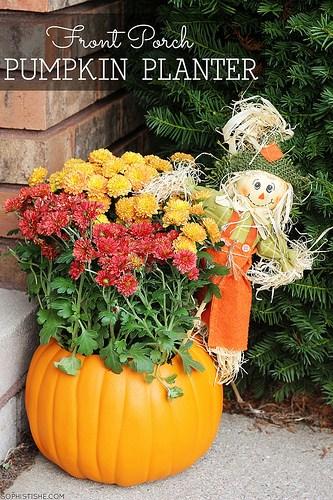 pumpkinplanter