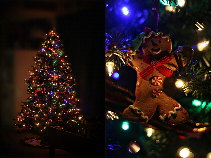 christmastreeour