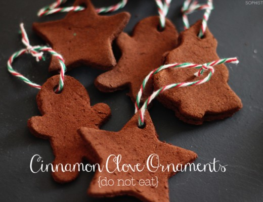 Cinnamon Clove Ornaments