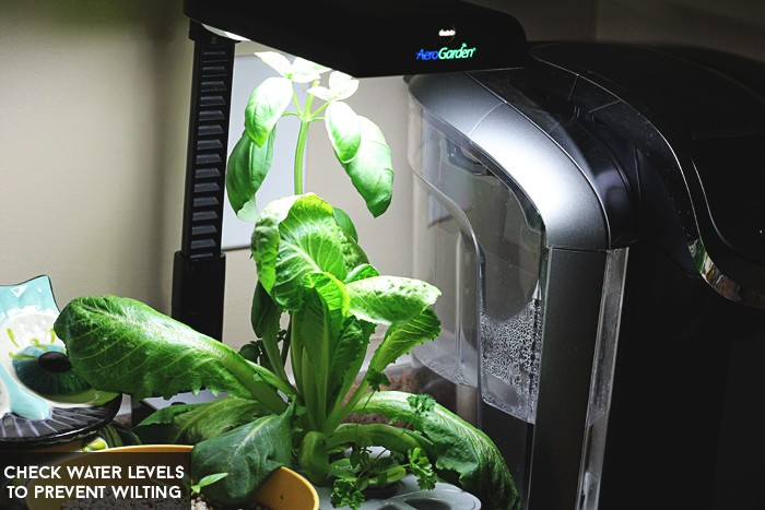 waterlevelaerogarden
