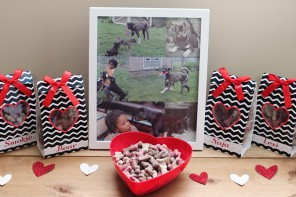 Valentine's Day Doggy Treat Bags