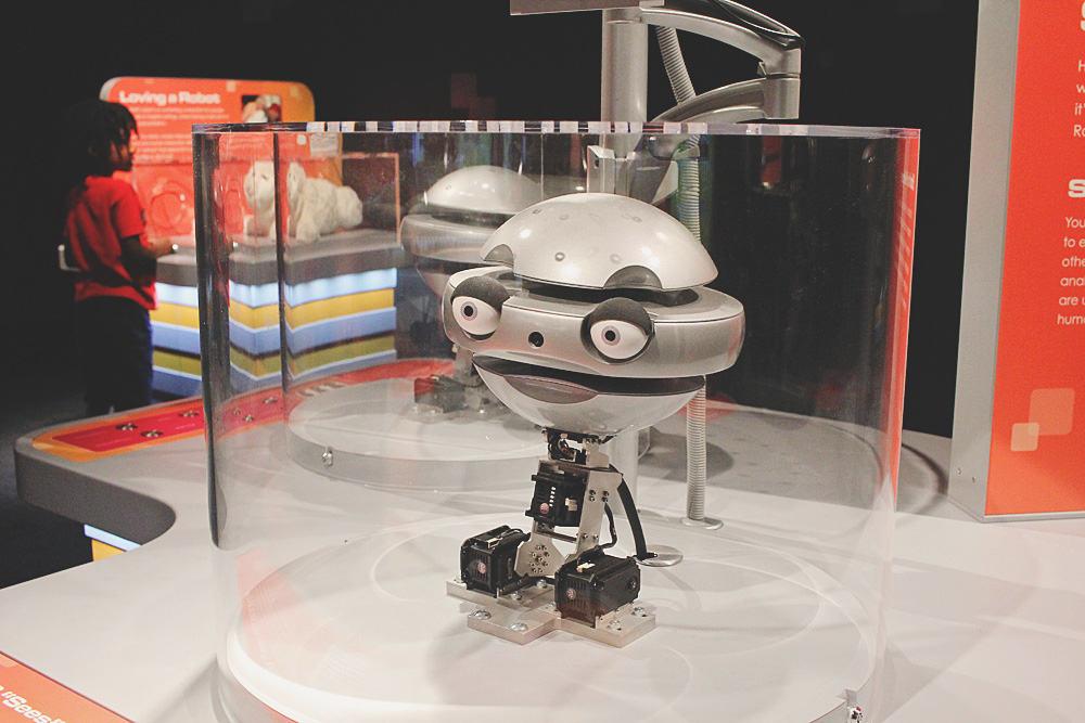MSIsocialrobot1