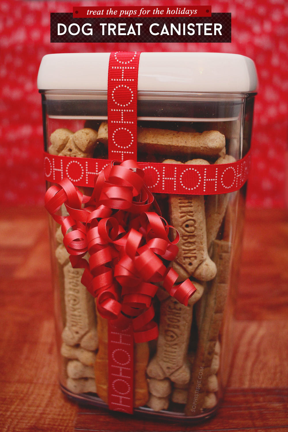 Holiday Gift: DIY Dog Treat Canister