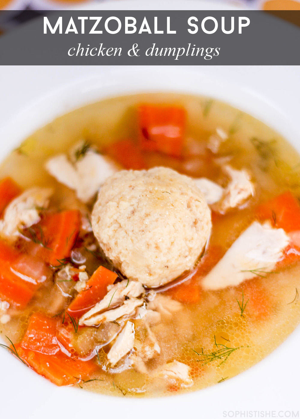Matzo Ball Soup-10