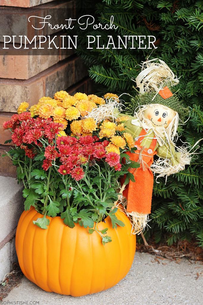 fall-halloween-pumpkin-planter-scarecrow-mums