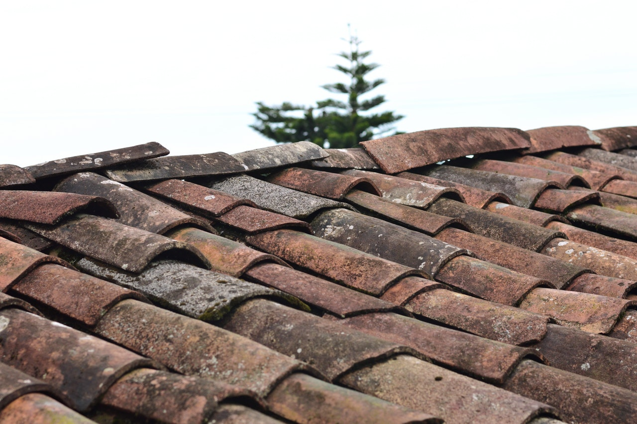 Things You Should Know Before You Get Your Roof Replaced · Articles